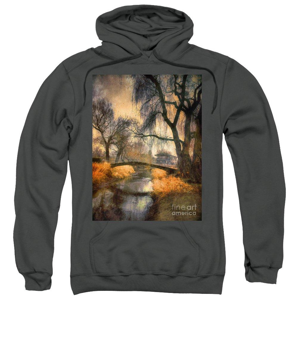 Bridge Sweatshirt featuring the photograph January 13 2010 by Tara Turner