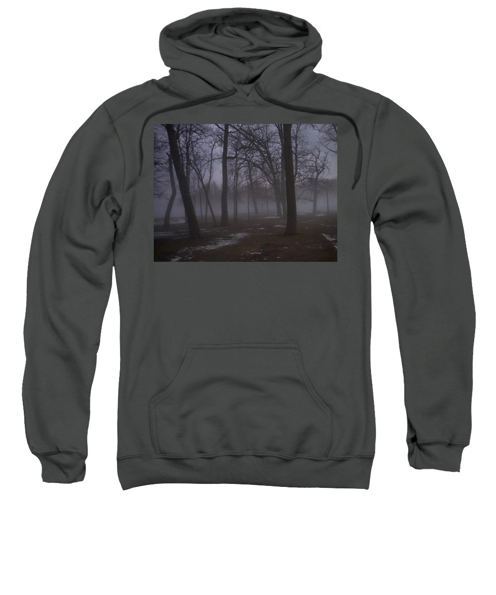 January Sweatshirt featuring the photograph January Fog 2 by Anita Burgermeister