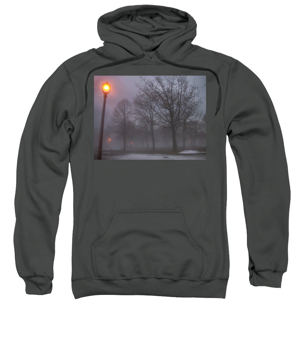 January Sweatshirt featuring the photograph January Fog 3 by Anita Burgermeister