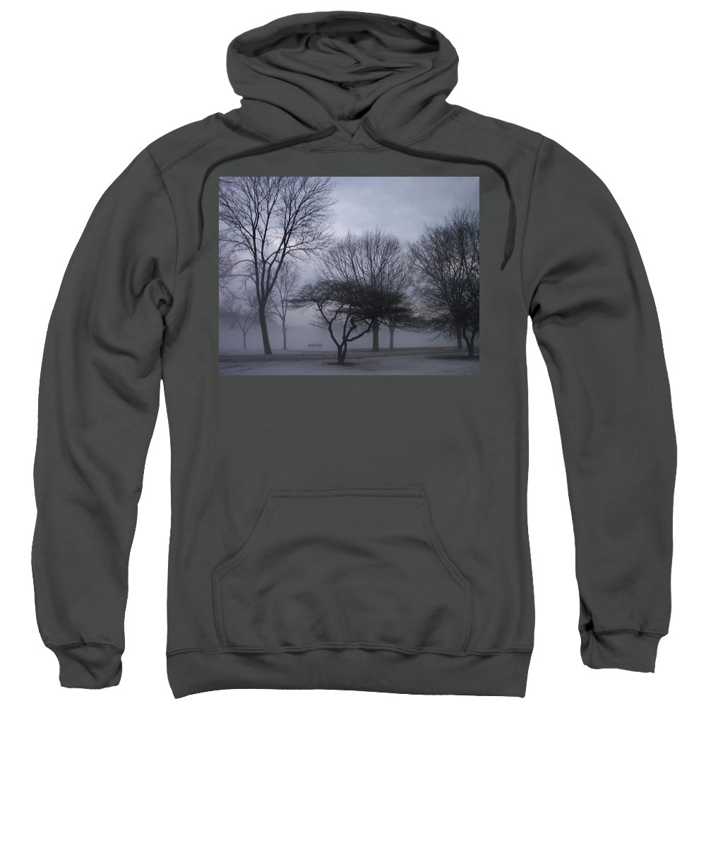 January Sweatshirt featuring the photograph January Fog 6 by Anita Burgermeister