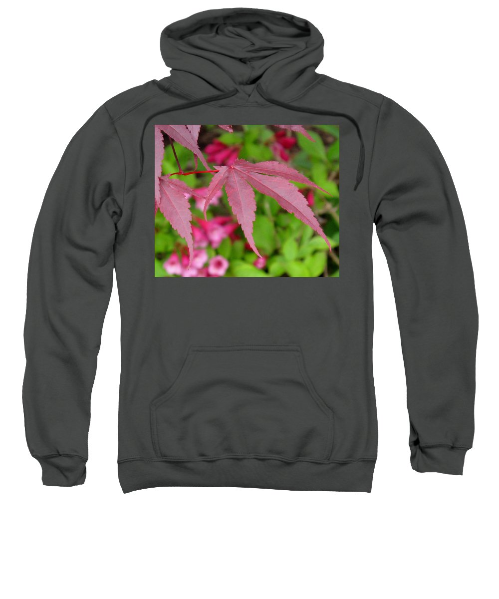 Japanese Maple Sweatshirt featuring the photograph Japanese Maple by Ian MacDonald