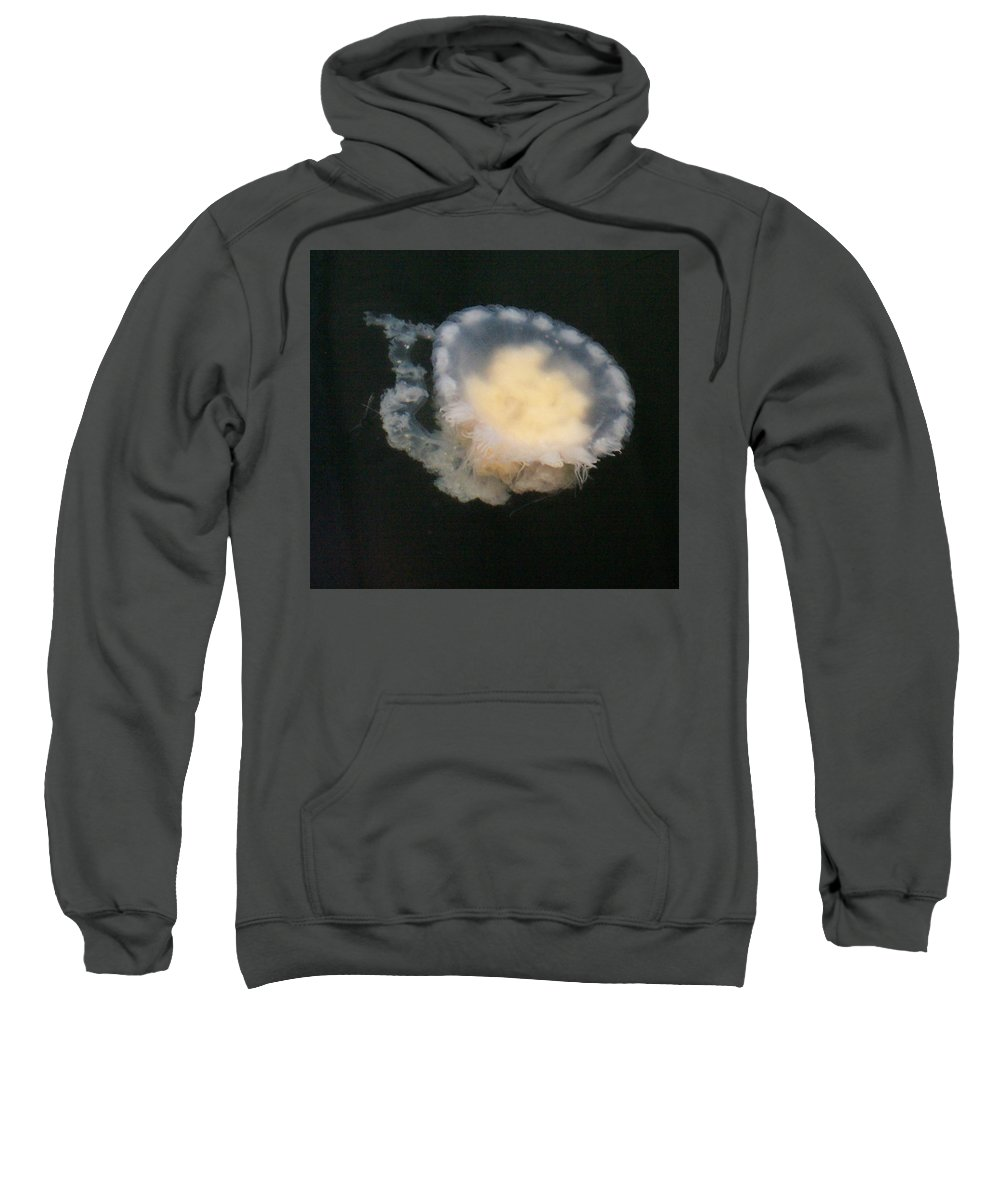 Jelly Fish Sweatshirt featuring the photograph Jellyfish 2 by Cheryl Trudell