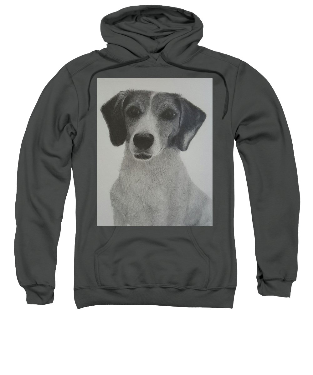 Sketch Sweatshirt featuring the drawing Jenny The Jackabee by Tina Slider