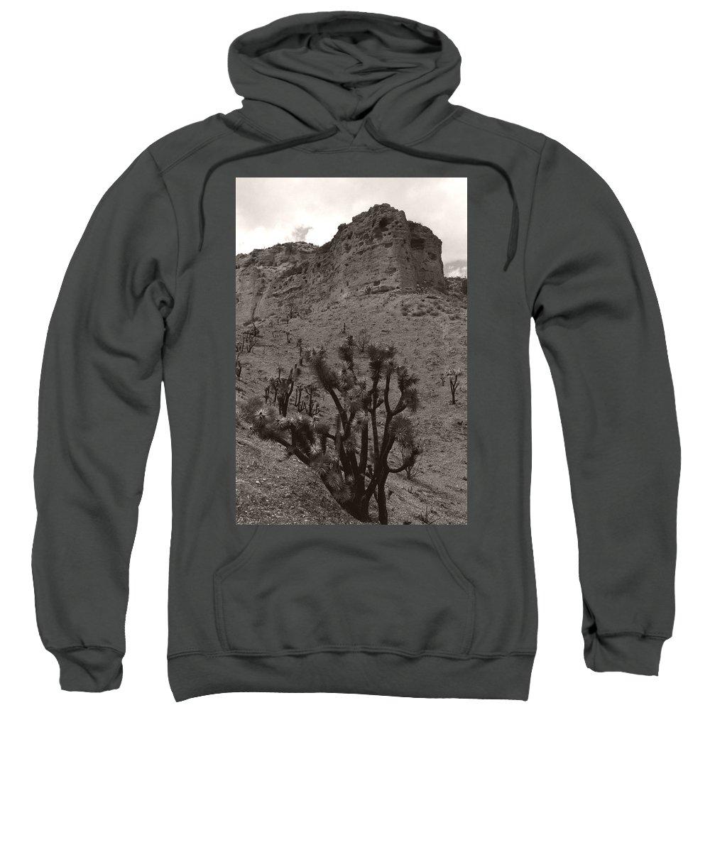 Sweatshirt featuring the photograph Joshua Hillside by Heather Kirk