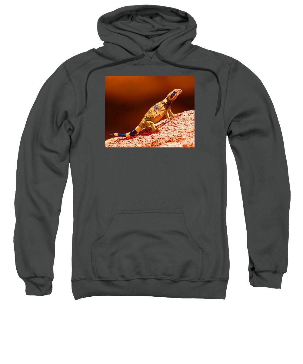 Lizard Sweatshirt featuring the photograph Joshua Tree Lizard by John Malmquist