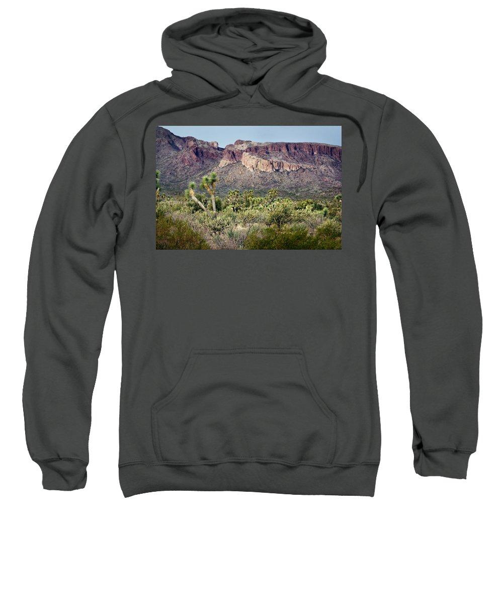 Joshua Trees Sweatshirt featuring the photograph Joshua Trees by Phyllis Denton