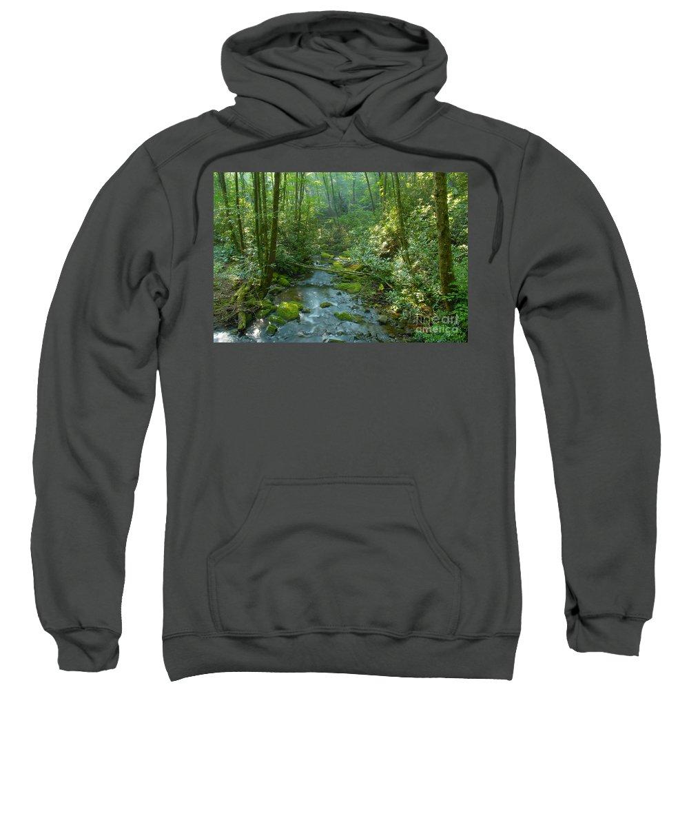 Joyce Kilmer Memorial Forest Sweatshirt featuring the photograph Joyce Kilmer Memorial Forest by David Lee Thompson