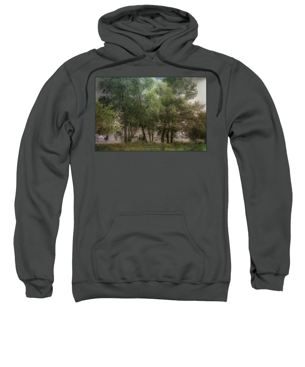 Trees Sweatshirt featuring the photograph Just A Few Trees by Marie LaConte
