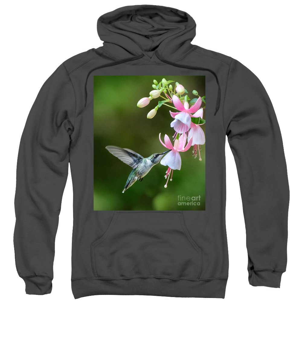 Hummingbird Sweatshirt featuring the photograph Just A Sip by Amy Porter