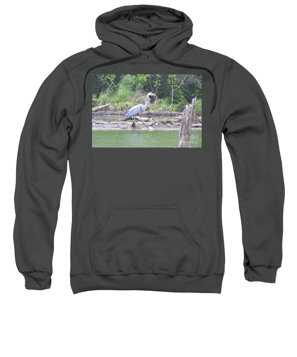 Highland Productions Llc Sweatshirt featuring the photograph Just An Evening Stroll I by Darren Dwayne Frazier