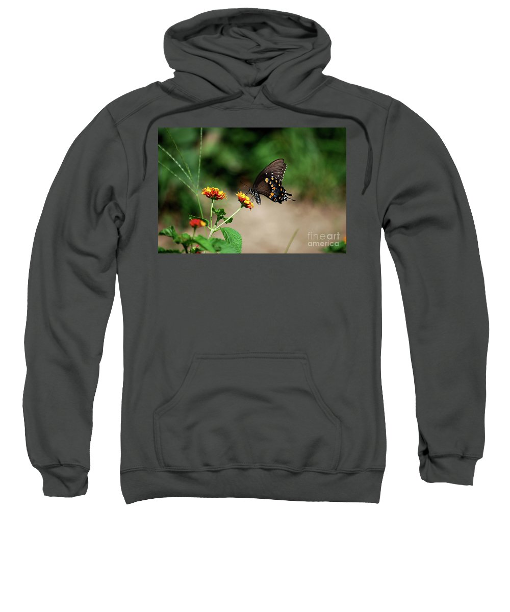 Swallowtail Sweatshirt featuring the photograph Just Me And My Flower by Lori Tambakis