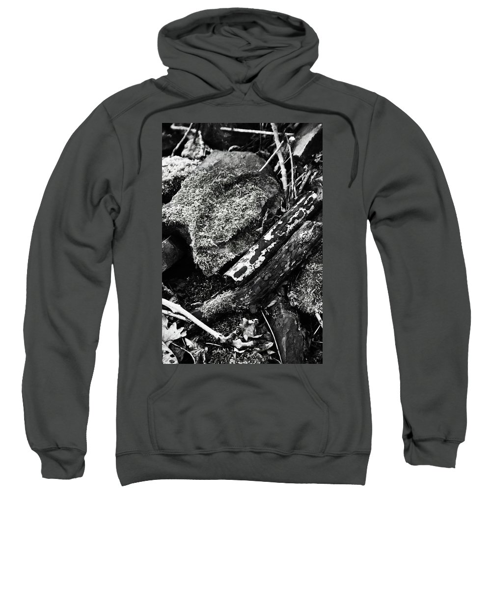 Bradford Sweatshirt featuring the photograph Just To Be With You by Jez C Self