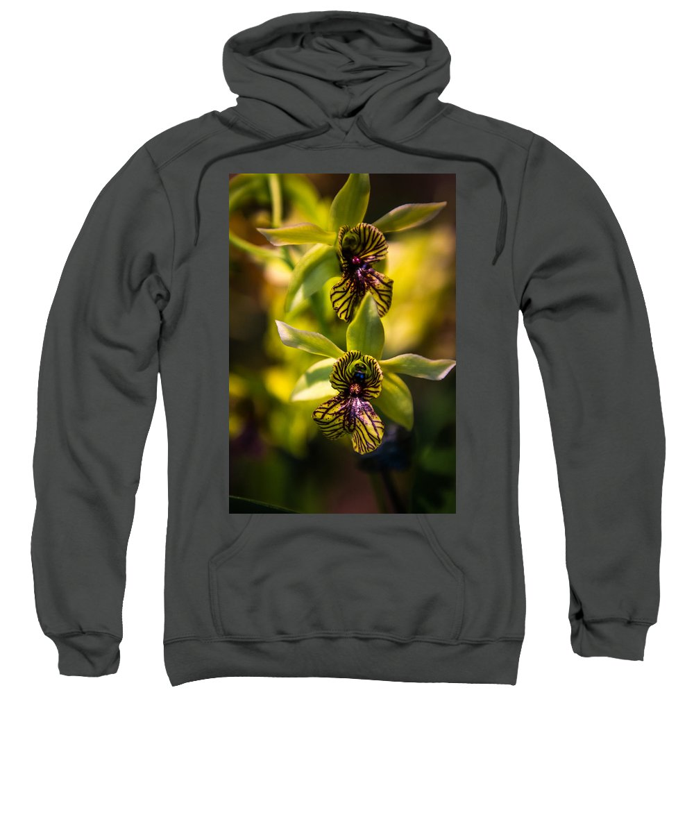 Orchid Sweatshirt featuring the photograph Just Two Of Us by Laimis Urbonas