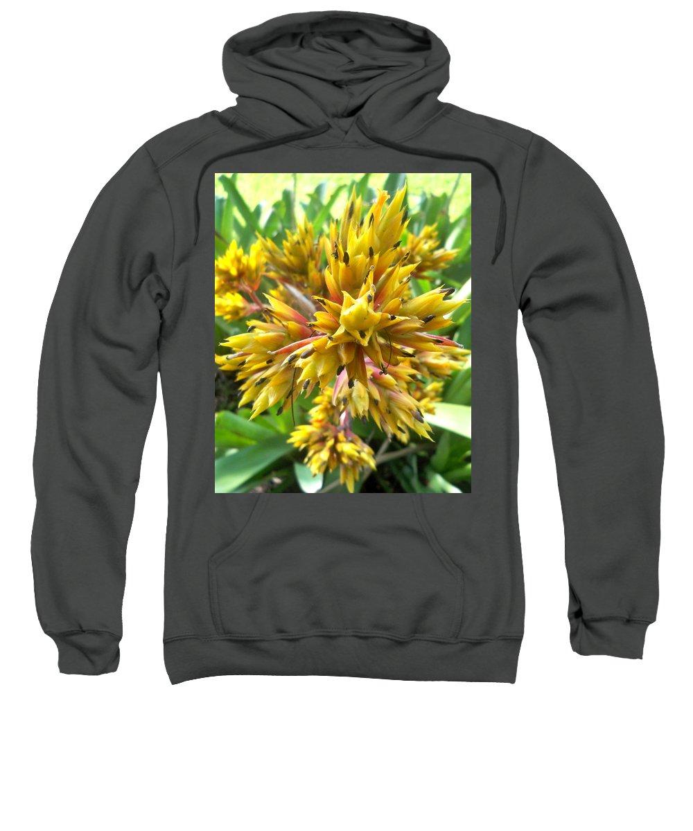 Florida Sweatshirt featuring the photograph Kaleidoscope by Chris Andruskiewicz