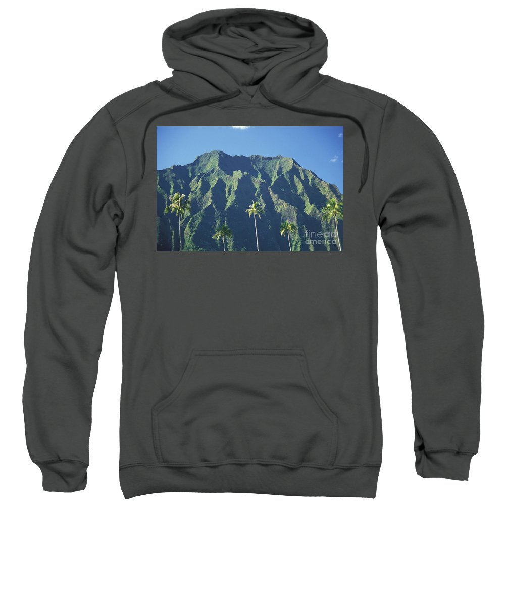 Blue Sweatshirt featuring the photograph Kaneohe Palm by Peter French - Printscapes