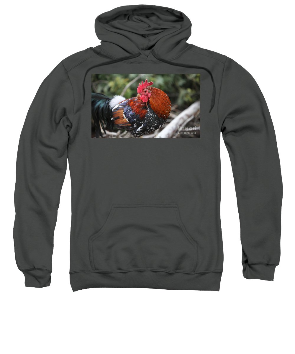 Rooster Sweatshirt featuring the photograph Kauai Rooster by Nadine Rippelmeyer