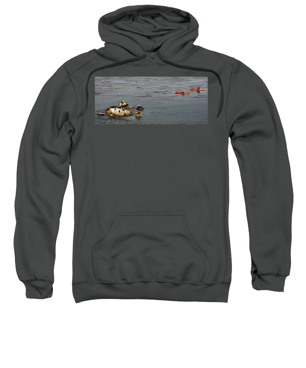 Animal Sweatshirt featuring the photograph Kayakers And Seal Lions by Marilyn Hunt