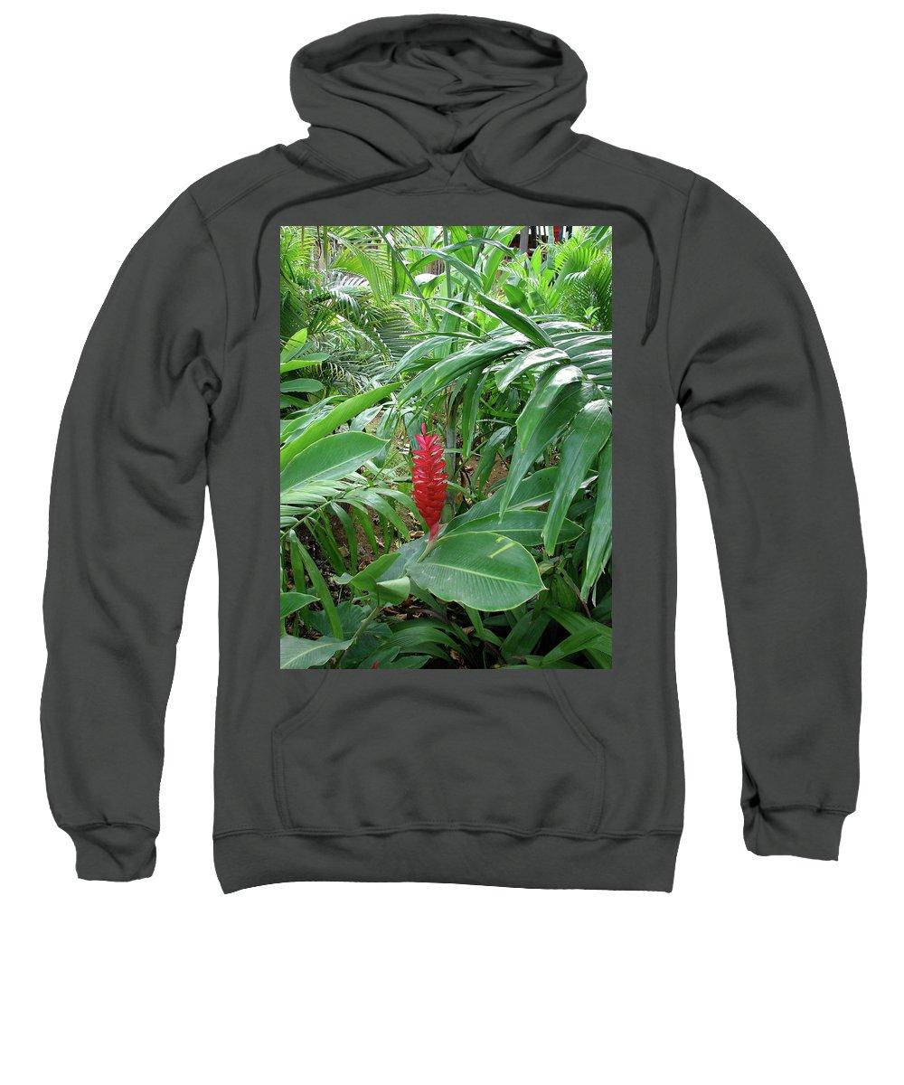Kingston Sweatshirt featuring the photograph Kingston Jamaica Foliage by Brett Winn