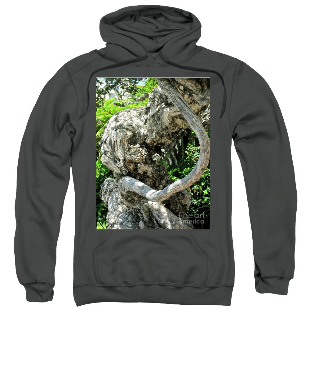 Tree Sweatshirt featuring the photograph Knarly Man by Gwyn Newcombe