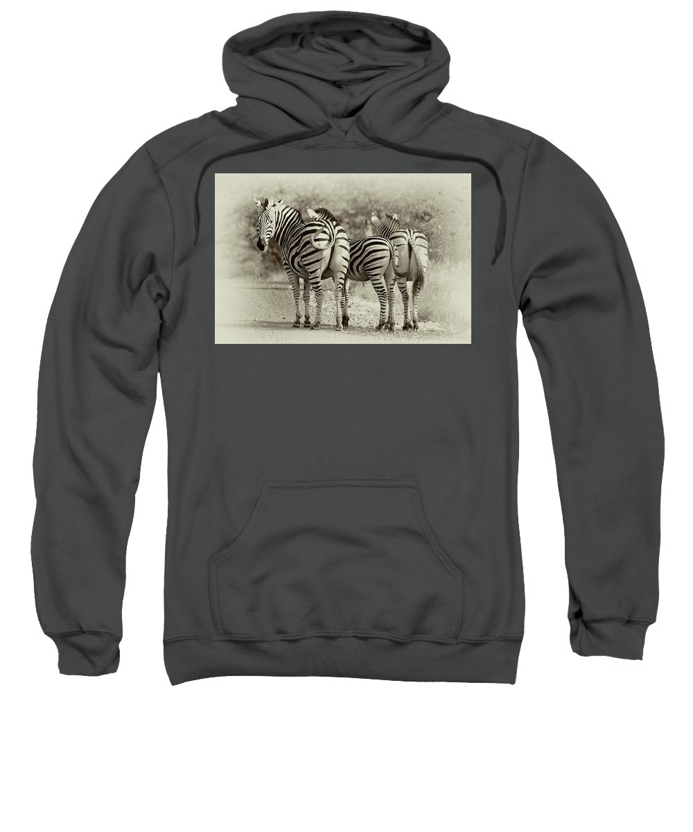Kruger Sweatshirt featuring the photograph Kruger by John Moulds