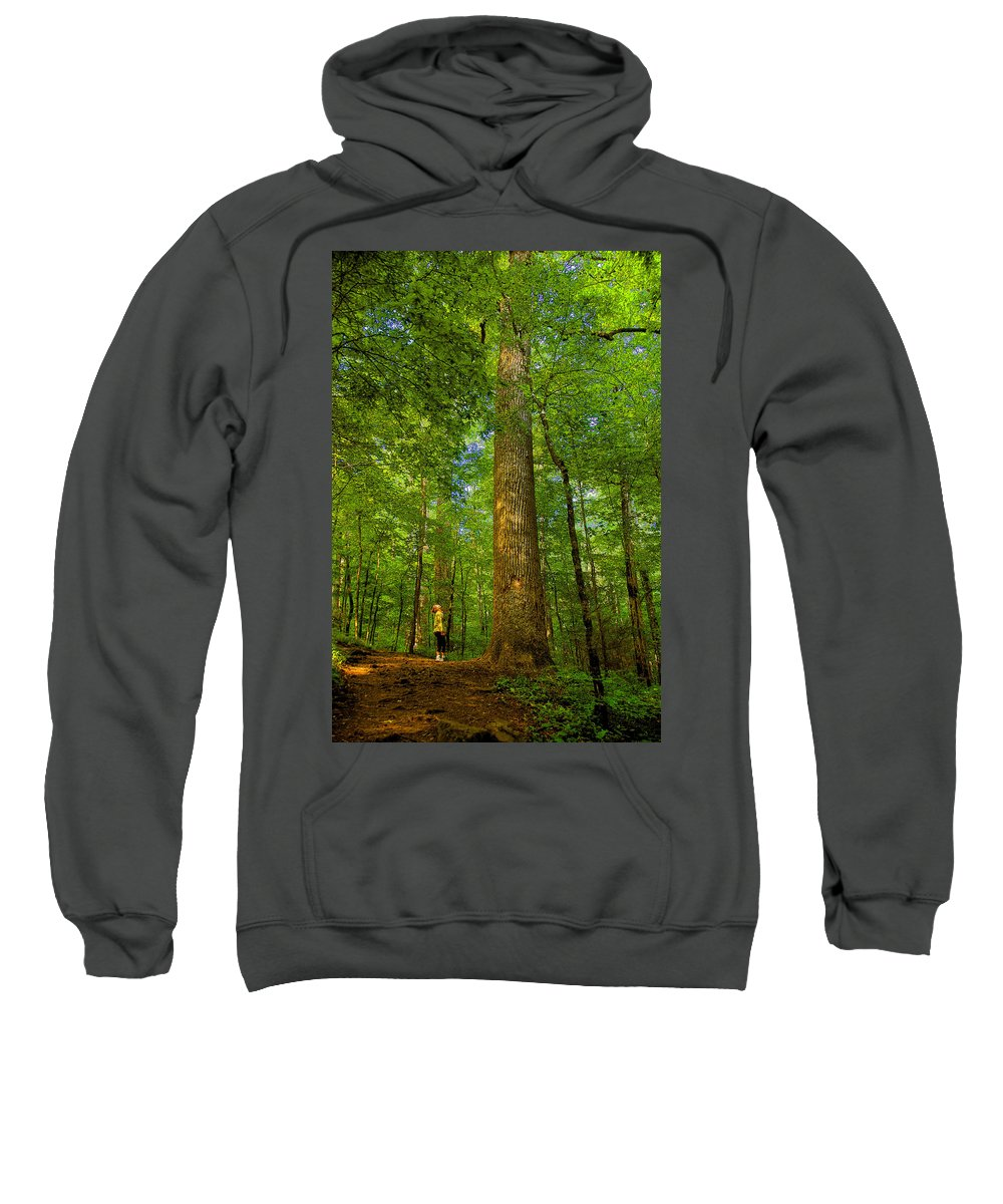 Forest Sweatshirt featuring the painting Lady And The Tree by David Lee Thompson