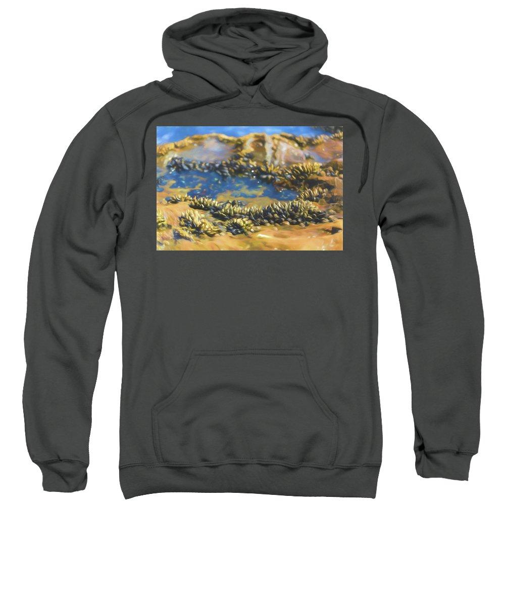 Shell Sweatshirt featuring the photograph Laguna Beach Tide Pool Pattern 3 by Scott Campbell