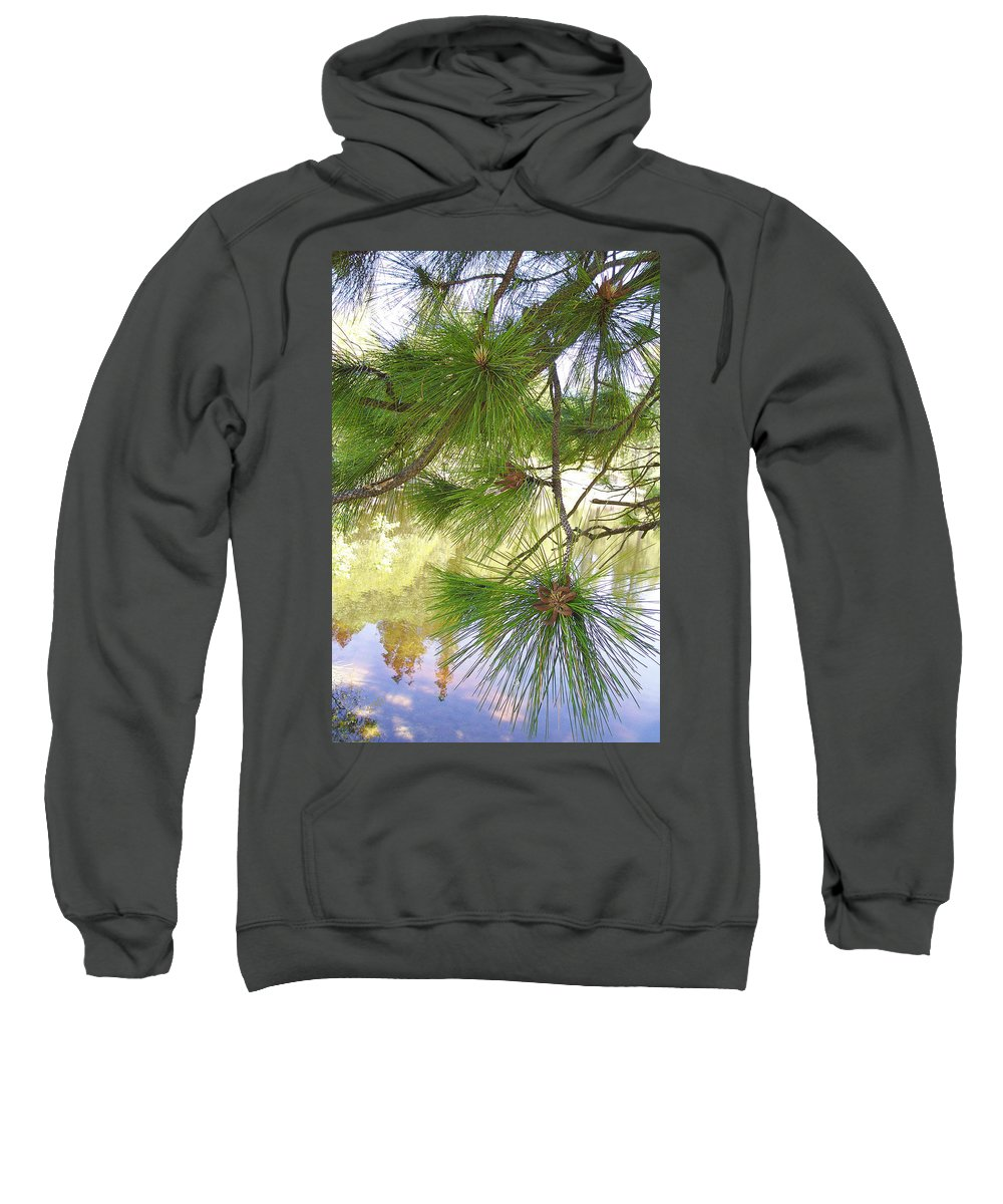 Pine Tree Branch Sweatshirt featuring the photograph Lake View With Ponderosa Pine by Ben and Raisa Gertsberg