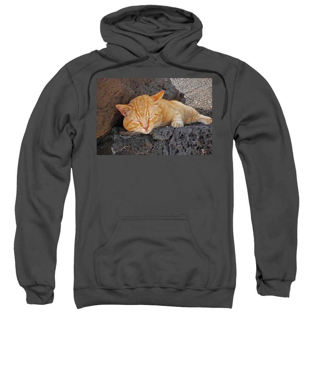 Cat Sweatshirt featuring the photograph Lanzarote Ginger by Charles Stuart