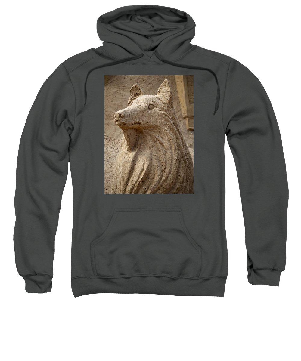 Finland Sweatshirt featuring the photograph Lassie by Jouko Lehto
