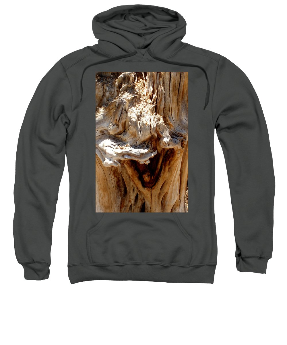 Tree Sweatshirt featuring the photograph Laughing Tree by Wayne Potrafka