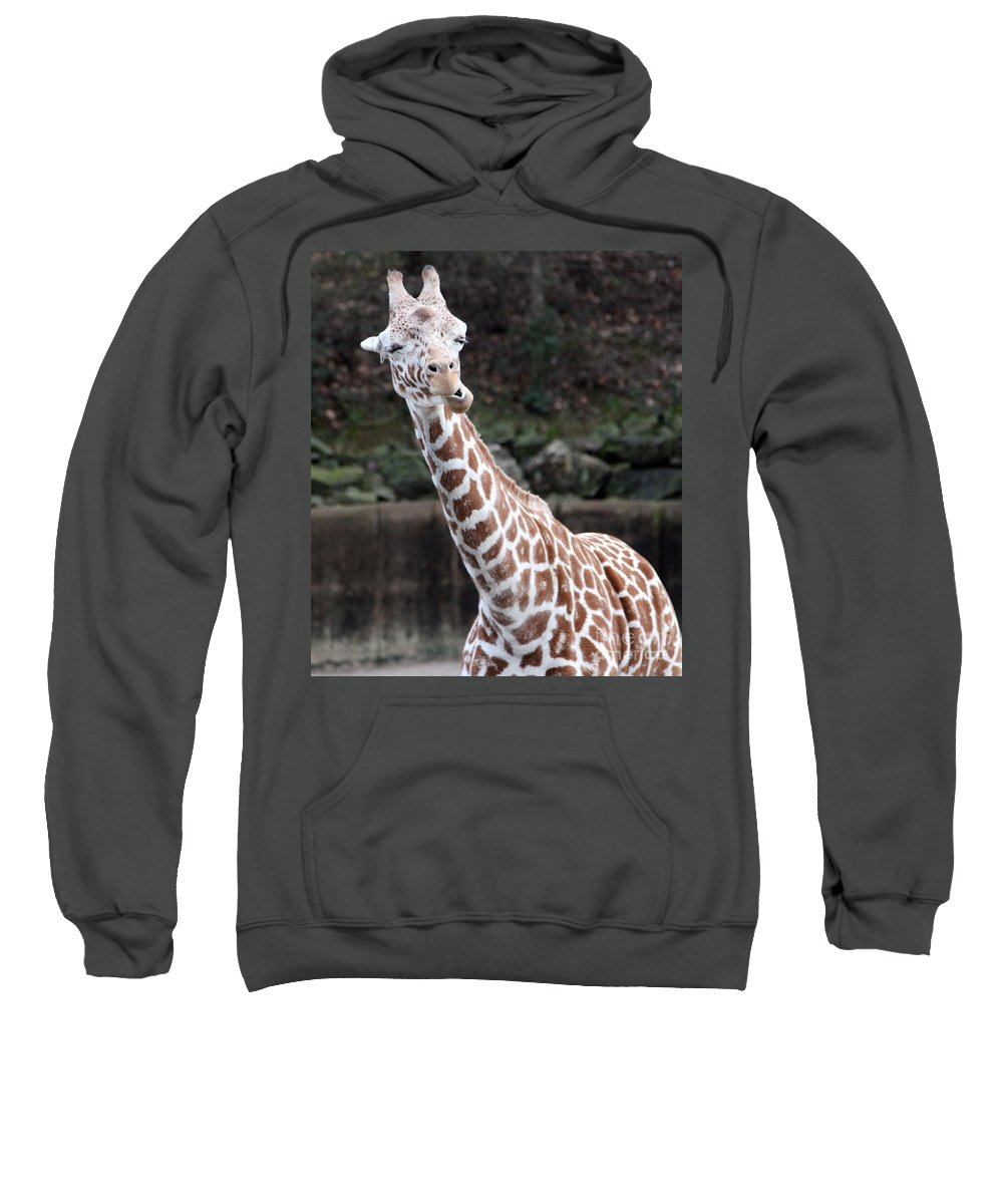 Laughing Giraffe Sweatshirt featuring the photograph Laughter by Amanda Barcon