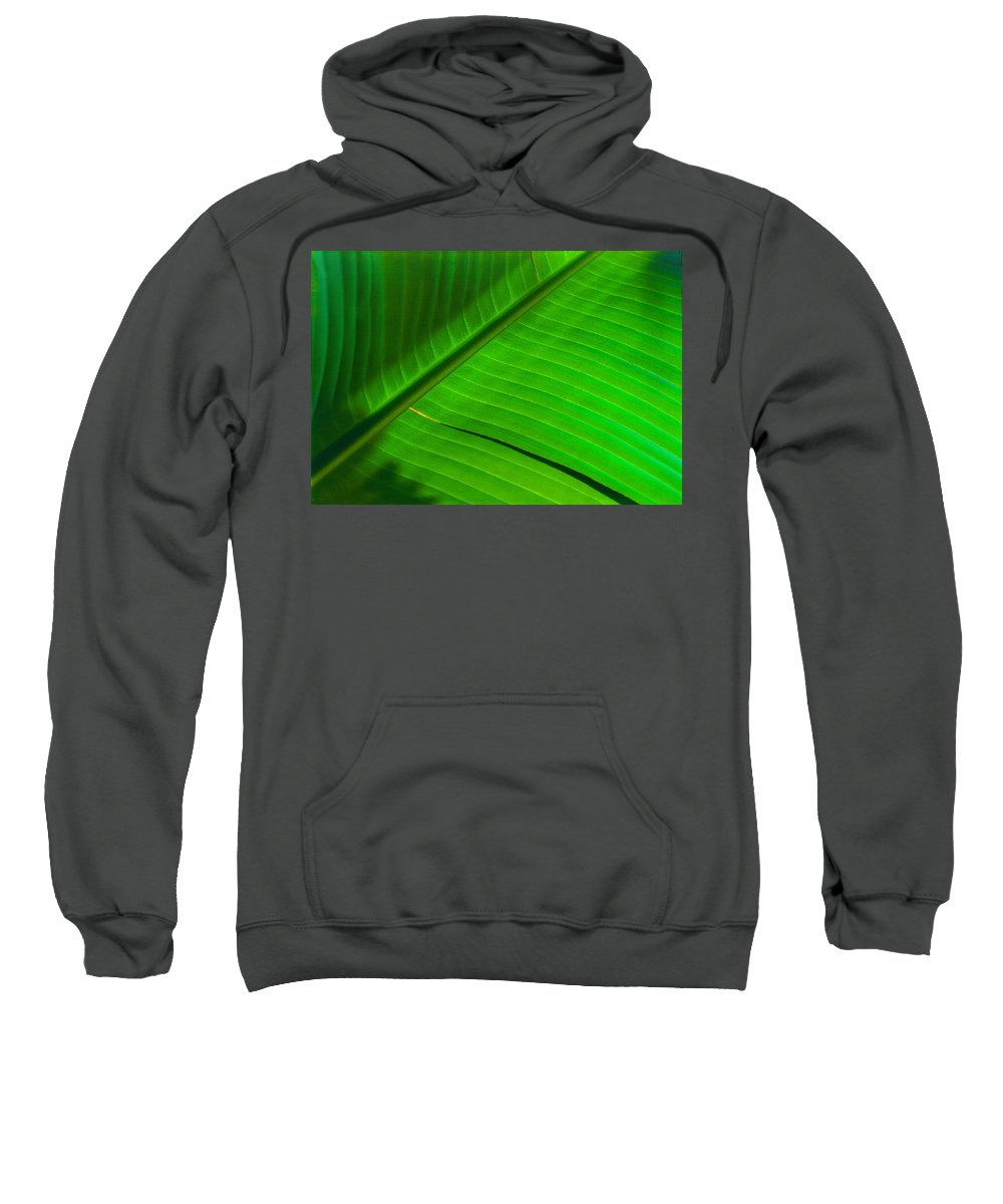 Photography Sweatshirt featuring the photograph Leaf Me Alone by Paul Wear