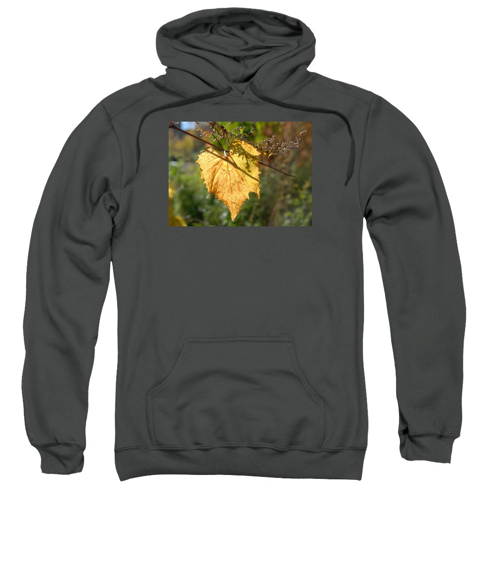 Leaf Shadows And Light Sweatshirt featuring the photograph Leaf Shadows And Light by Bill Driscoll