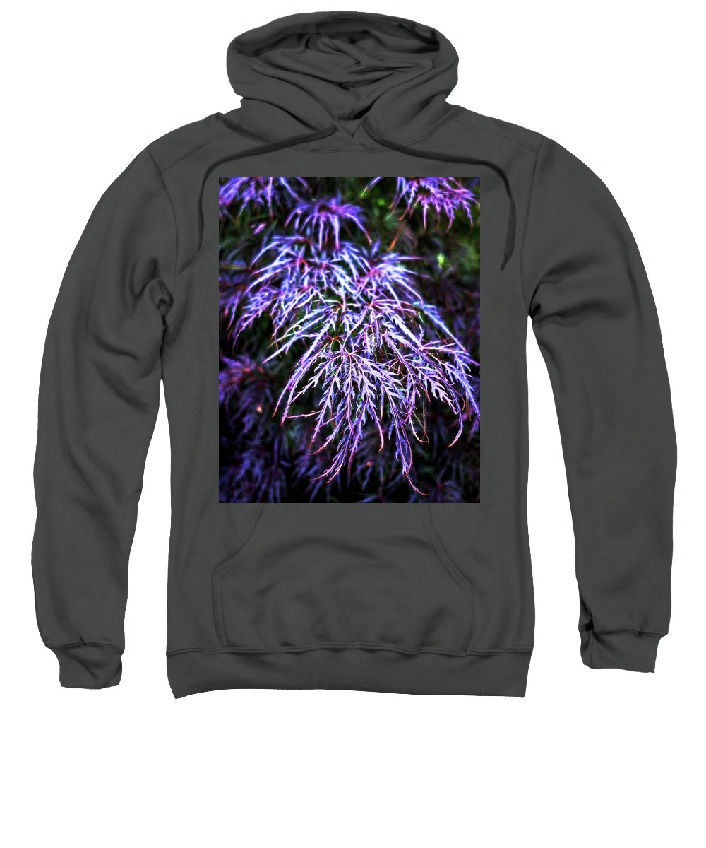 Sweatshirt featuring the photograph Leaves In The Light by Robert FERD Frank