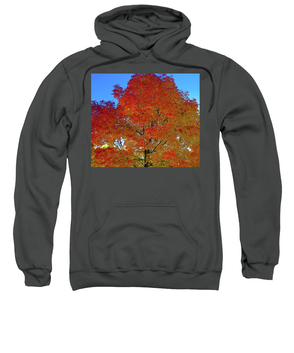 Sweatshirt featuring the photograph Leaves Of Fire by Karl Unertl