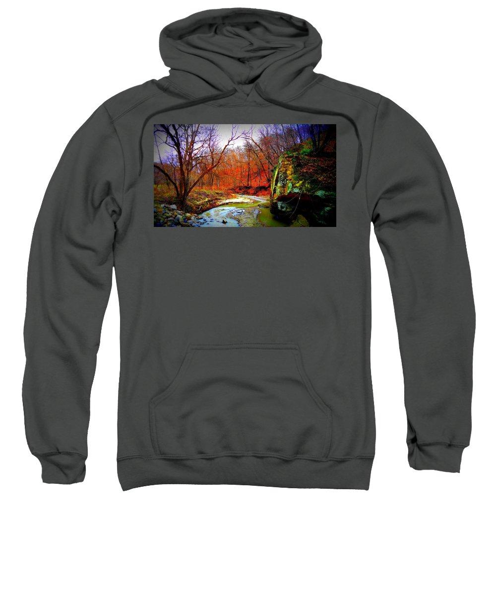 Creek Sweatshirt featuring the digital art Ledgecreek by Nathan Lester