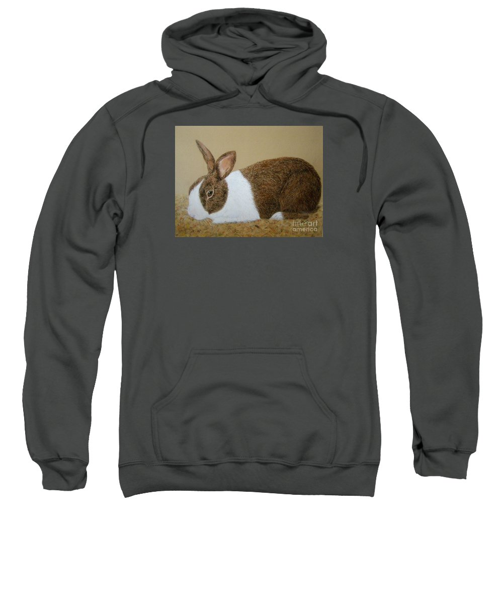 Bunny Sweatshirt featuring the painting Les's Rabbit by Lynn Quinn