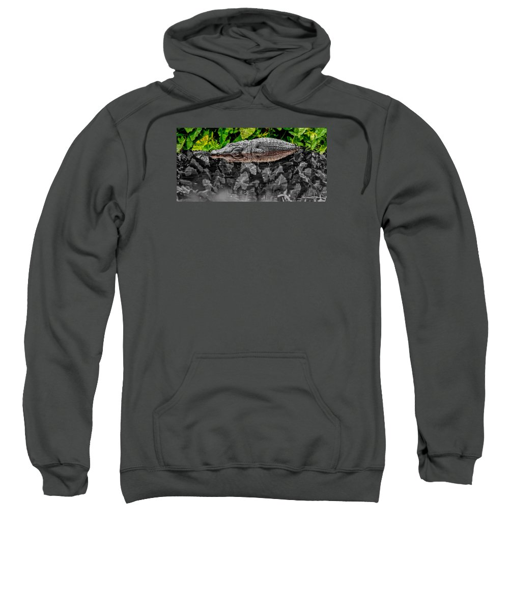 American Sweatshirt featuring the photograph Let Sleeping Gators Lie - Mod by Christopher Holmes