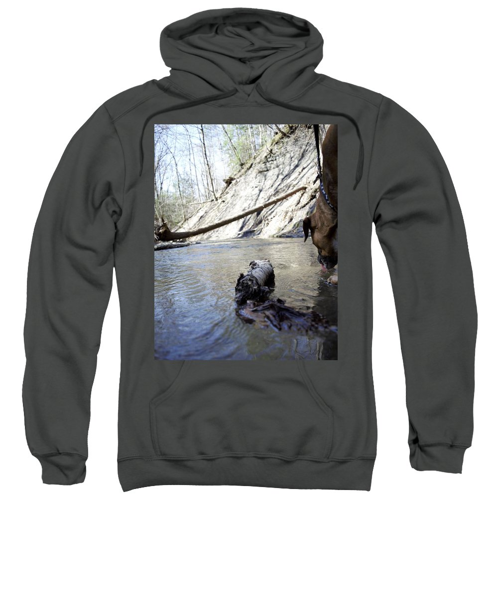 Dog Sweatshirt featuring the photograph Lets Get A Drink by Christina McNee-Geiger