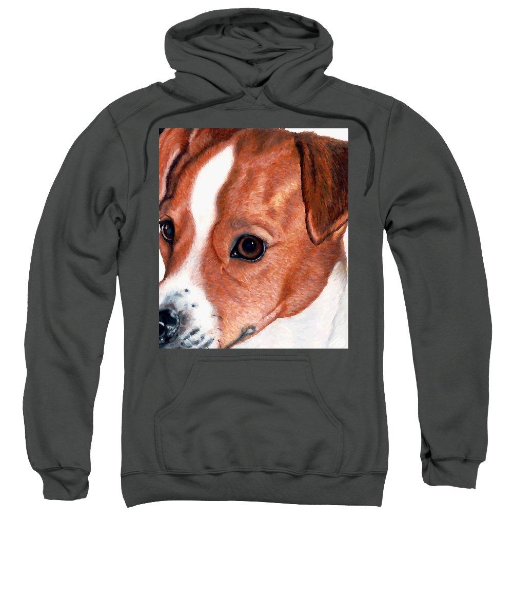 Jack Russell Terrier Sweatshirt featuring the drawing Lewie by Kristen Wesch