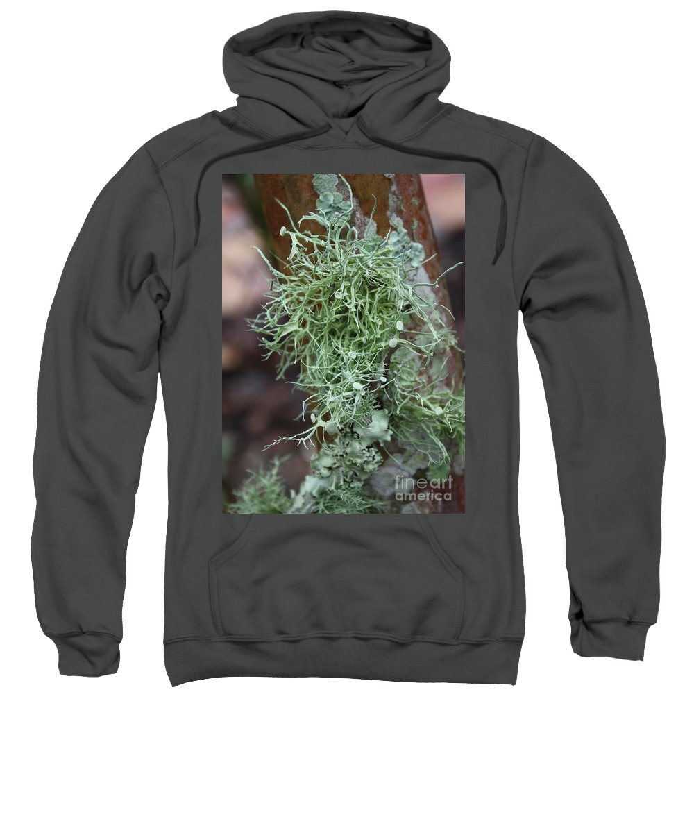 Nature Sweatshirt featuring the photograph Lichens 6 by Carol Groenen