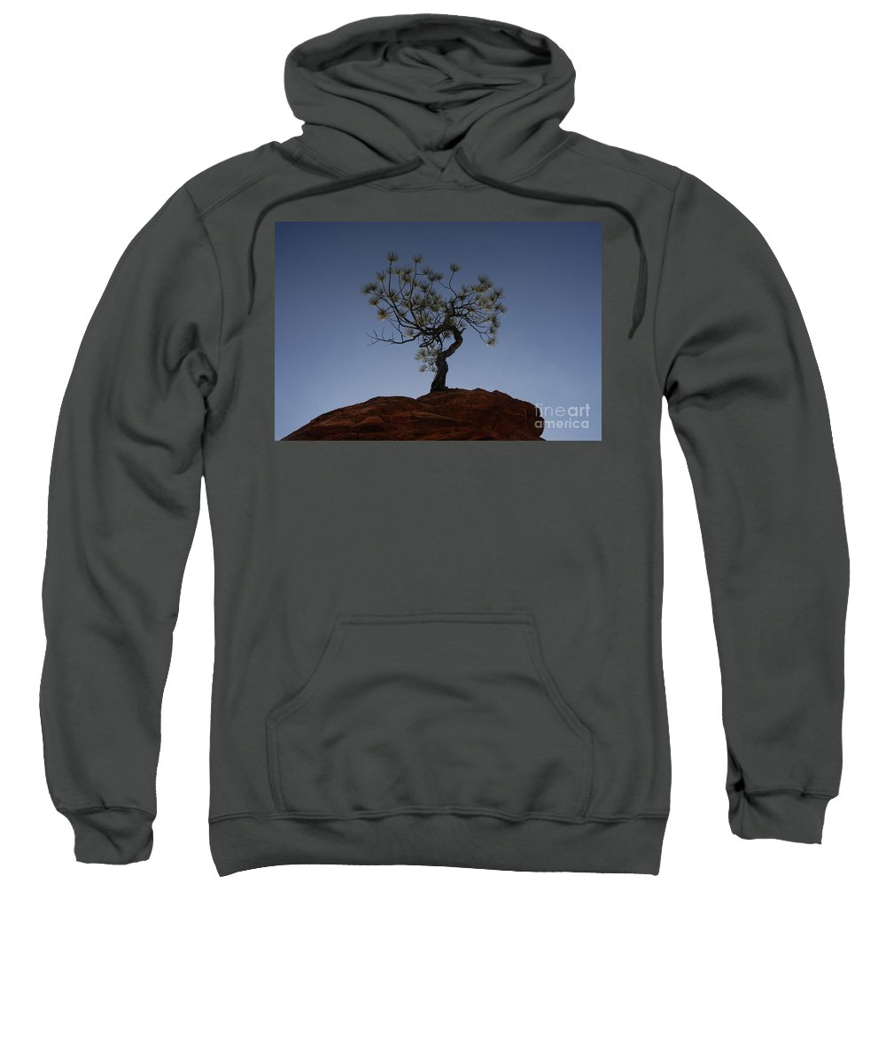 Tree Sweatshirt featuring the photograph Life Force by David Lee Thompson