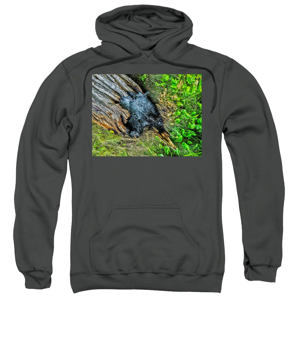 Ash Sweatshirt featuring the photograph Lightning by William Norton