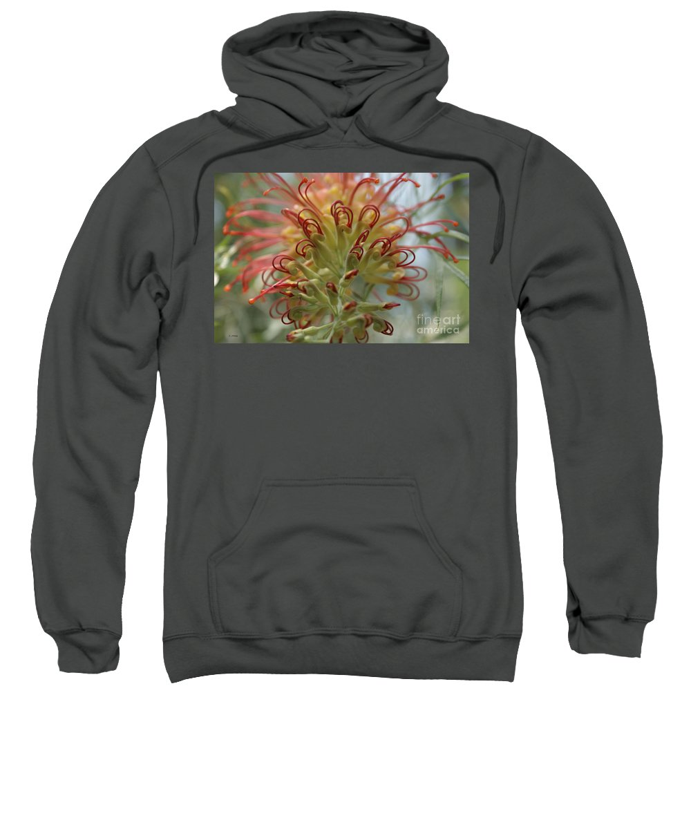 Floral Sweatshirt featuring the photograph Like Stems Of A Cherry by Shelley Jones