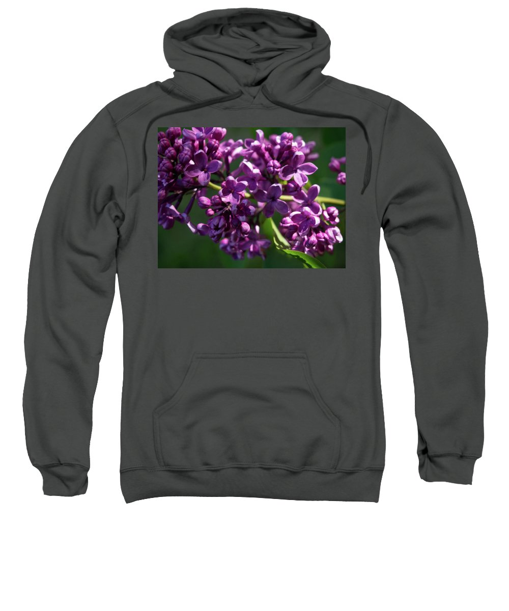 Flower Sweatshirt featuring the photograph Lilac by Kathy Benham