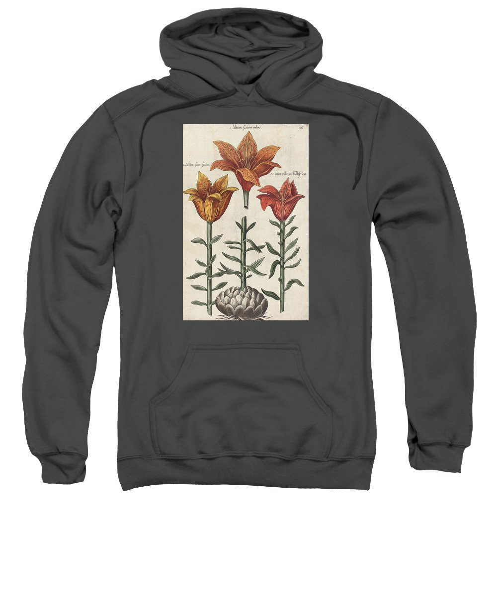 Lilies Sweatshirt featuring the drawing Lillies by Emanuel Sweert