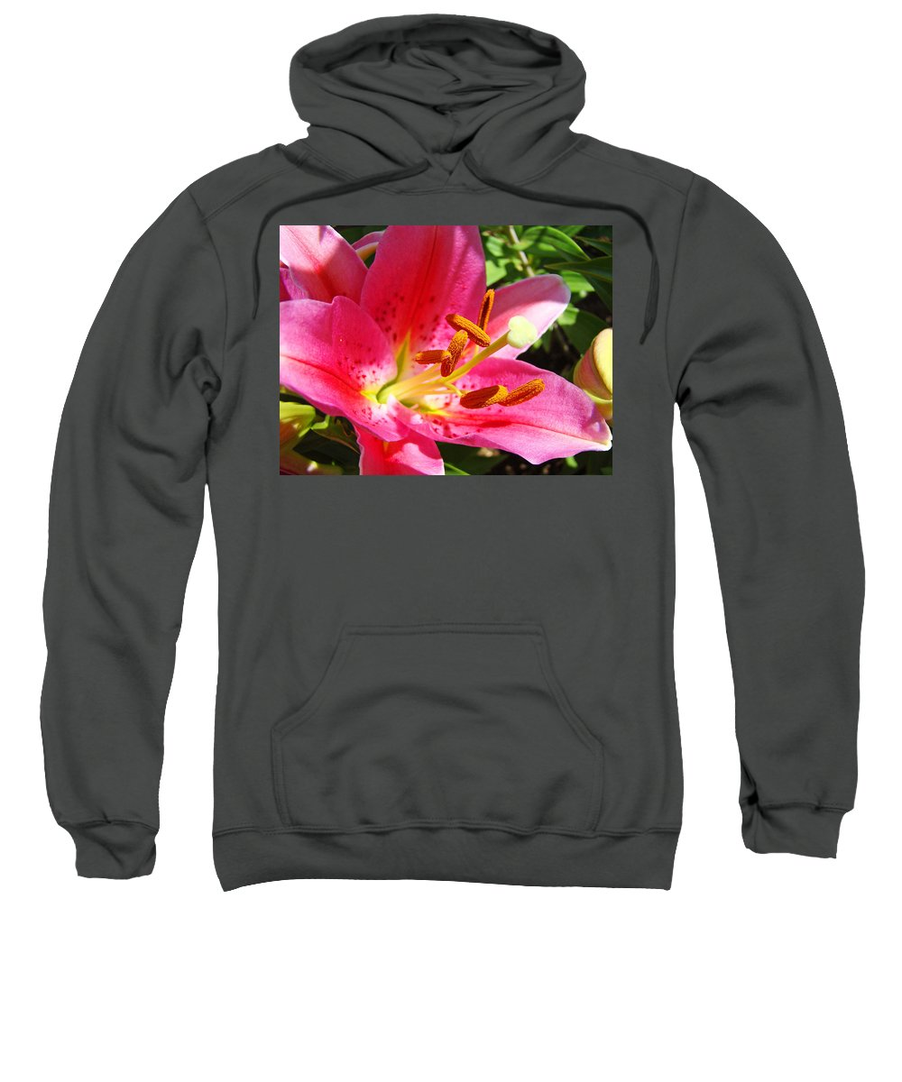 Lilies Sweatshirt featuring the photograph Lily Flower Pink Lilies Giclee Art Prints Baslee Troutman by Baslee Troutman