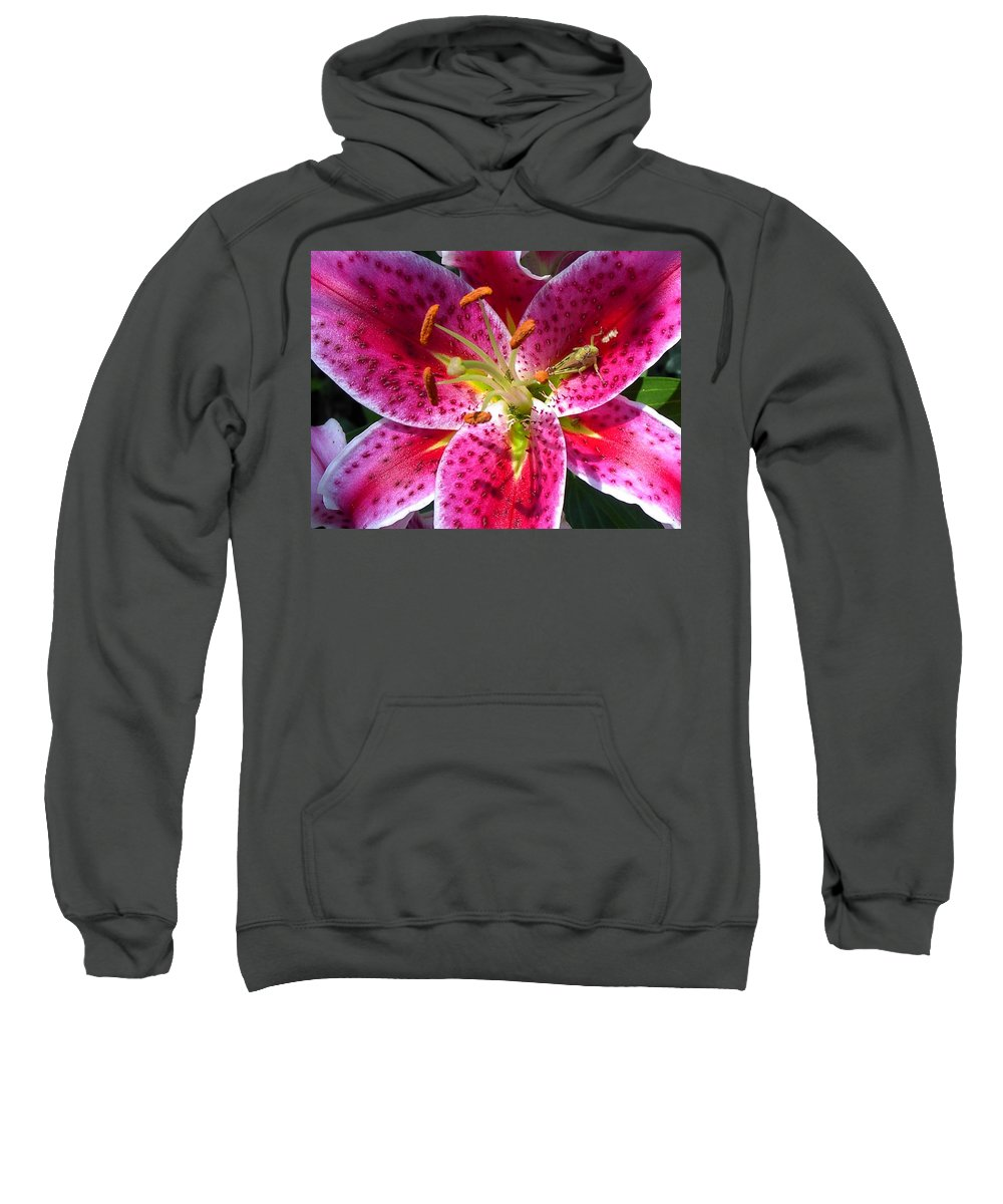 Charity Sweatshirt featuring the photograph Lily by Mary-Lee Sanders