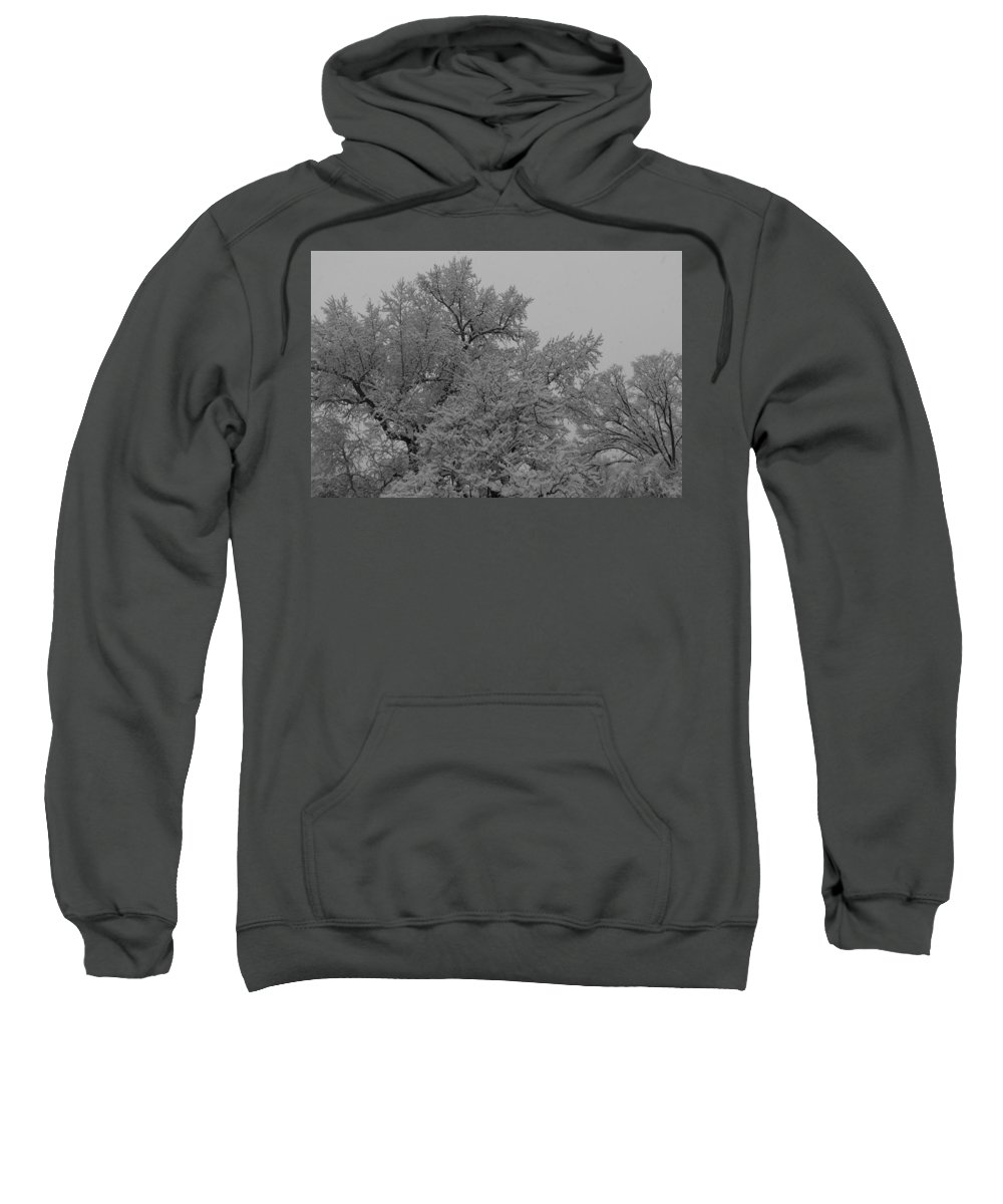 Black And White Photography Sweatshirt featuring the photograph Limb Lace by Kirk Griffith