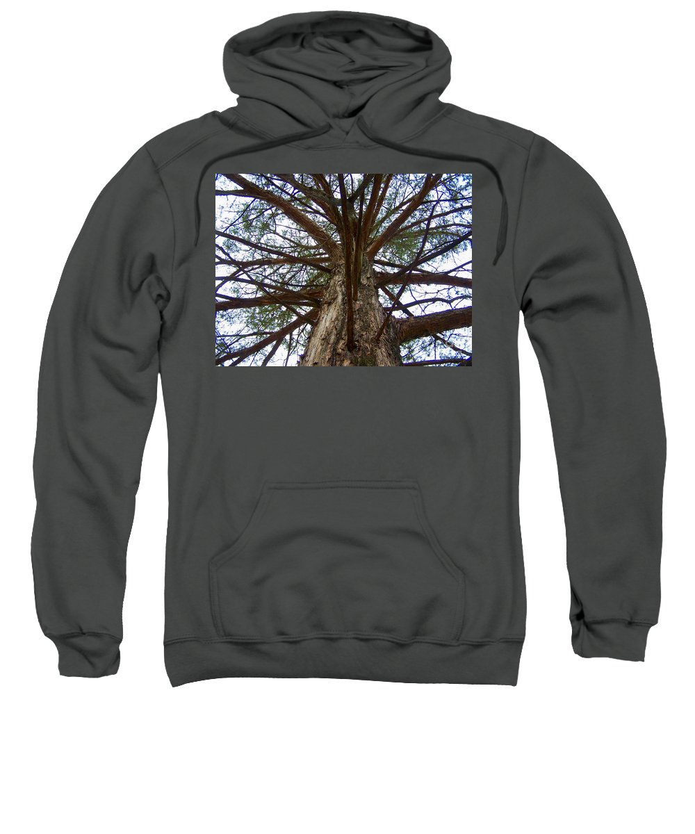 Life Sweatshirt featuring the photograph Live Spokes by Nadine Rippelmeyer